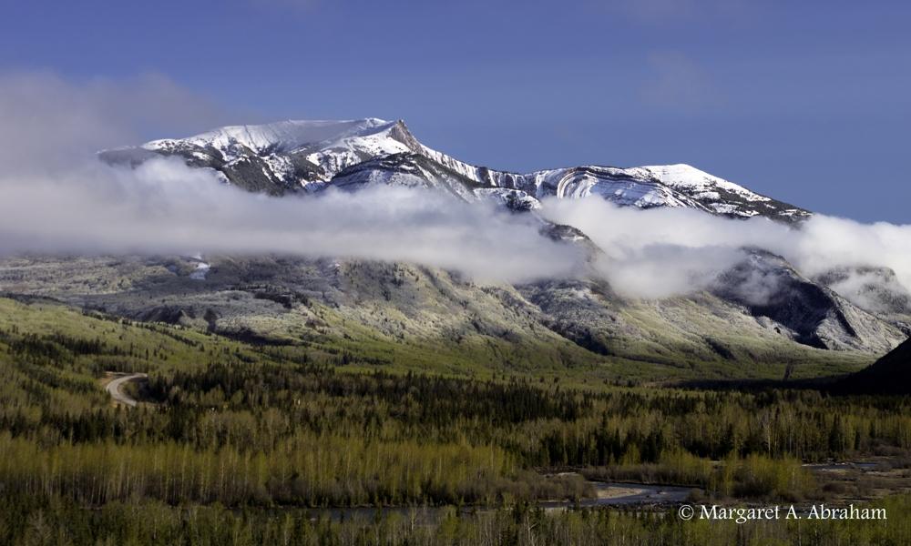 Mt.Hamell12-164